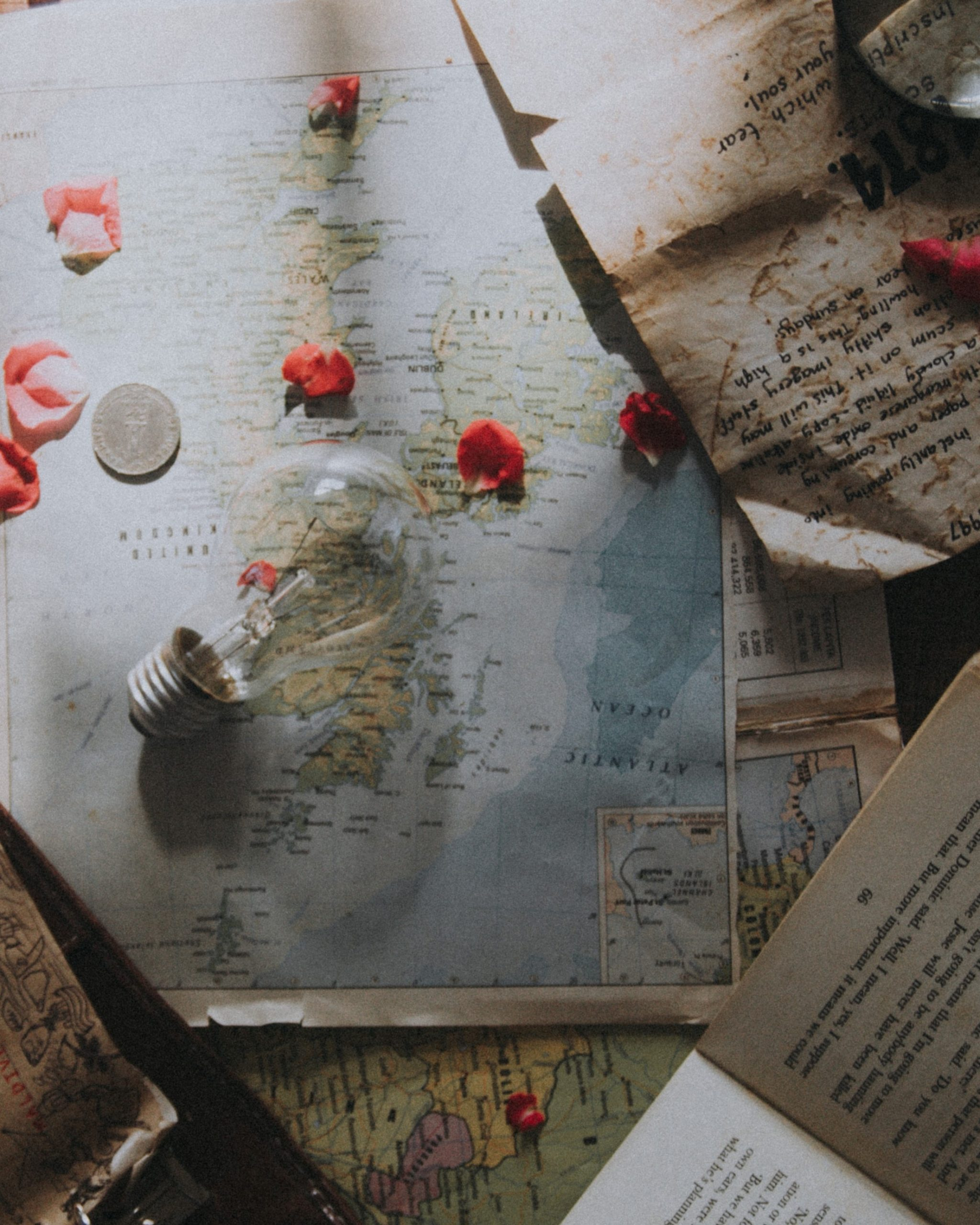A Straight Line or a Wandering Path? Mapping the story of your life so far